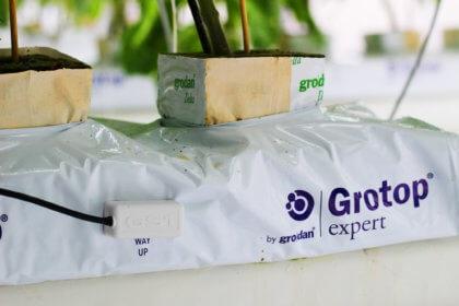 Mit welchen Sensoren können Sie Daten im Gartenbau erfassen?