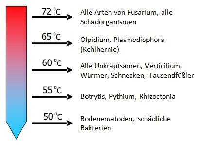 Benötigte Temperatur zur Abtötung von Krankheitserregern