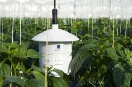 Wie wird ein CO2-Messgerät kalibriert?