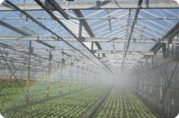 Sprinkleranlagen reinigen im Gartenbau