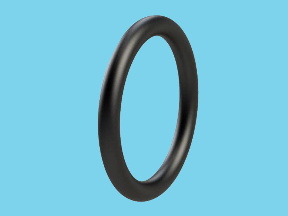 O-Ring 10 x 1mm fpm zw.fertic