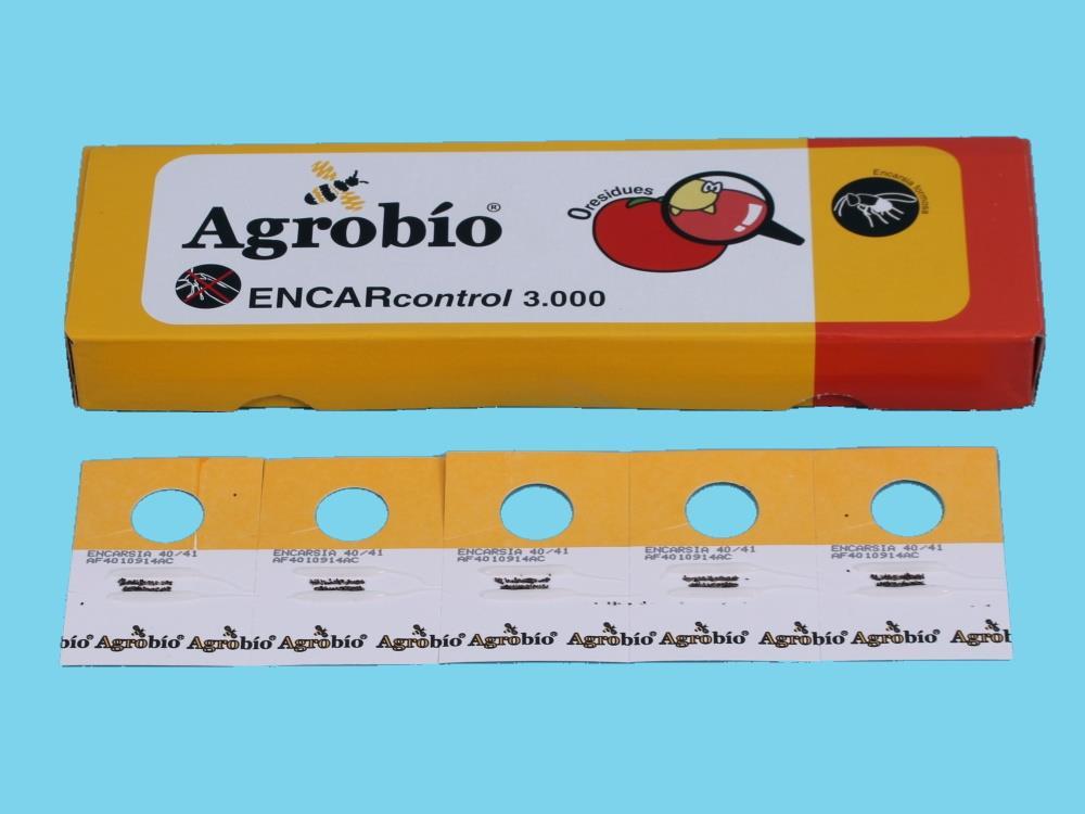 ENCARcontrol [50 Karten mit 60 Puppen) (Satz AB)