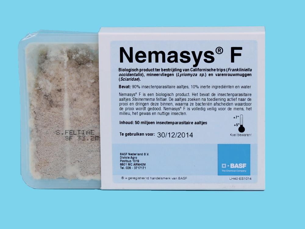 Nemasys F [50 Millionen]