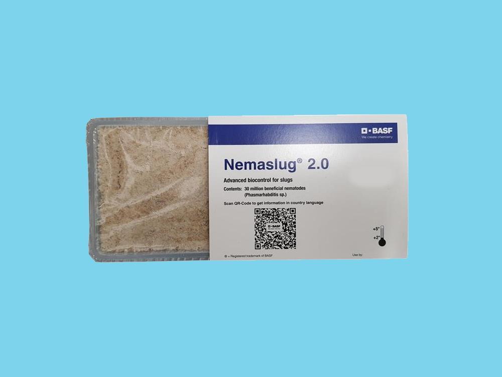 Phasmarhabditis hermaphrodita Nemaslug 30 Million (100m2)