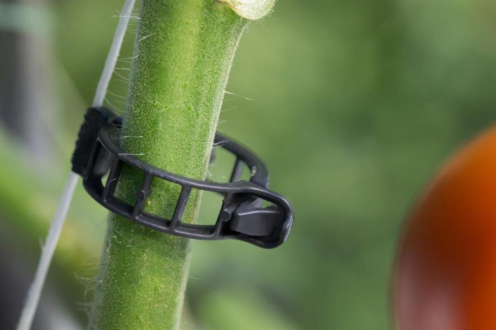 Brinkman Clip schwarz 21 mm 10500 S