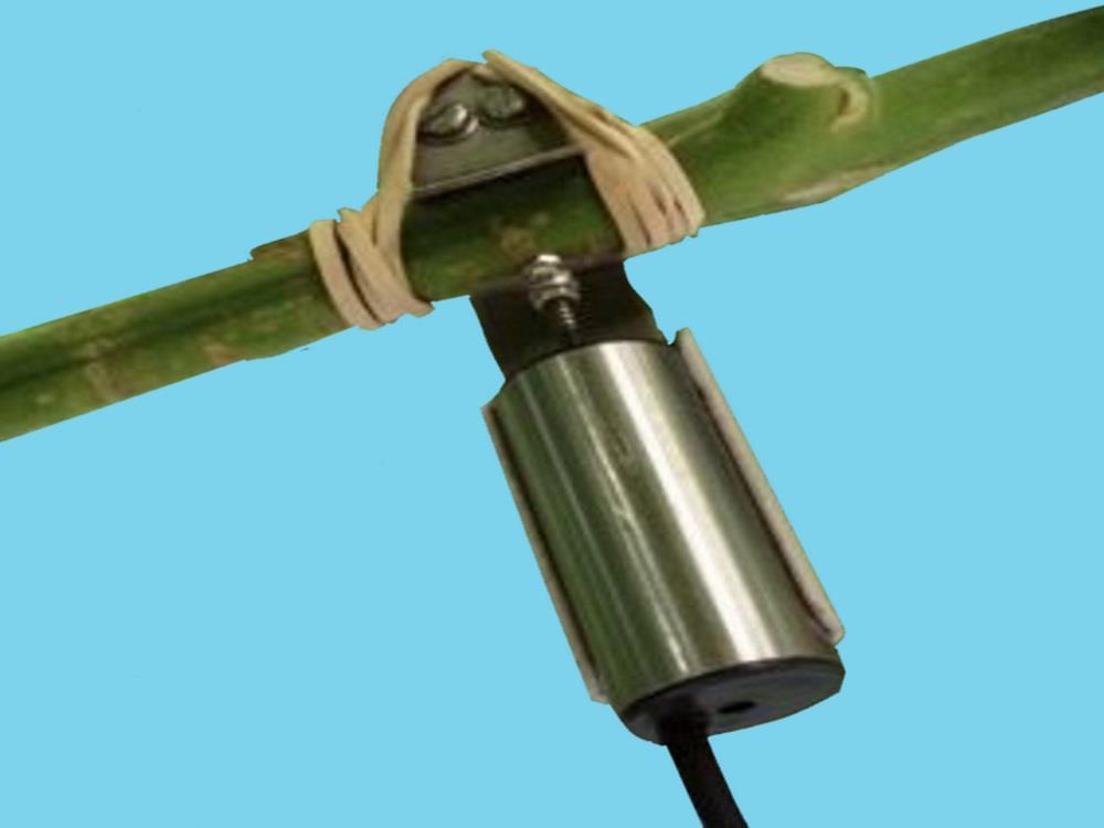 Durchmesser-Sensor 2Grow Jahresabonnement